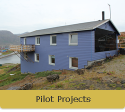 NEES - Pilot Projects